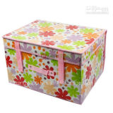 Clothing Household Non-Woven Fabric Storage Box (CBP-1)