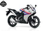 Popular Design Japanese Technolagy Street Motorcycle