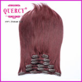 Without Chemical Process Real Virgin Clip in Hair Extension