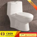 Hot Bathroom Furniture One Piece Sanitary Ware Toilet (C809)