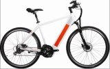700c Ce Approved Lithium Battery Electric Bike Sport Style