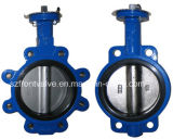 Cast Iron Wafer and Lug Butterfly Valve