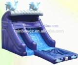 Rainbow Wholesale Dolphin Outdoor Cheap Kids Water Slides of Inflatable