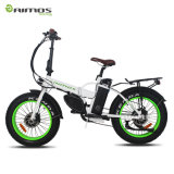 High Speed Racing Motorcycle/ Scooter Moped/Electric Bicycle
