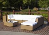 Garden Patio Wicker Rattan Outdoor Furniture (T3008)