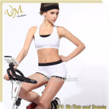 New Designs Hot Women Running Sport Bra Yoga Sportswear