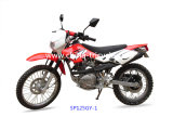 125cc Fashion Dirt Bike with High Quality (SP125GY-1)