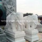 Granite Stone Carving Animal Statue, White Elephant Sculpture for Garden