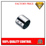 Stainless Steel Handrail Tube End Cap (JBD-A038)