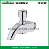 OEM&ODM Quality Polishing Brass Forged Faucet (AV2053)