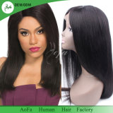 Direct Factory Top Quality Lace Wig Unprocessed Human Hair