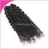 Wholesale Fast Ship Hair Weft Virgin Malaysian Curly Hair Extension