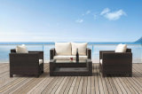 Outdoor Rattan Sofa Set -Garden Furniture (BZ-SF006)