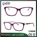 Fashion New Product Acetate Spectacle Optical Frame Eyeglass Eyewear