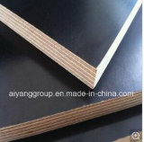Marine Plywood Sheets, Film Faced Plywood 18mm (Shuttering, Formwork, Construction Timber)
