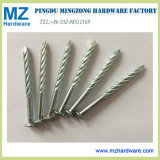 Electro Galvanized Twisted Screw Ring Shank Nails