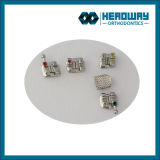 Headway Orthodontic Supplier/Orthodontic Products Manufacturer