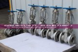 Wcb Stainless Steel API Gate Valve with Signal