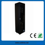 Network Cabinet/Server Cabinet (ST-NCE-42U-66) with High Quality