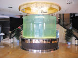 Plexiglass Cast Cylinder/Round Acrylic Aquarium/Saltwater Aquarium