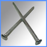 Galvanized Square Boat Nail for Building