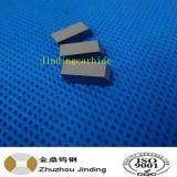 Tungsten Carbide Saw Tips for Dry Wood Cutting