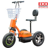 Big Power and Cruise Electric Tricycle