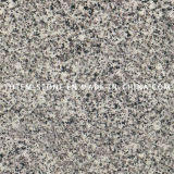 Polished Natural Stone Grey Granite Floor Tile for Kitchen Flooring