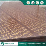 Top Quality Black or Brown Film Faced Shuttering Plywood