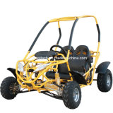 Gk-D125 125cc Go-Kart Dune Buggy Big-Frame Two-Seater Gas Engine