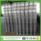 Cheap Price Best Selling Grassland /Farm Guard Field Fence