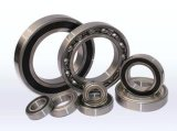 Made in China Deep Groove Ball Bearing 62300-RS