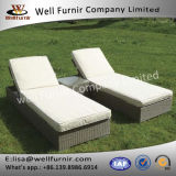 Well Furnir Synthetic Rattan Hand Wovean Sunlounge Set