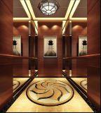 Fjzy-High Quality and Safety Passenger Elevator Fj-15158