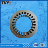 Silvery or Black Stator for Motor