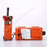 Factory Price 2 Channel Industrial Crane Remote Controller Grab Remote Control