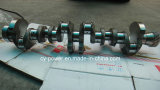 Weichai Deutz 226b Crankshaft 13022374 with High Quanlity