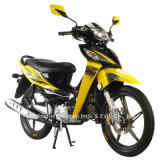 Jincheng Motorcycle Model Jc110-19A Cub