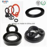 Oil Lip Seals Used in Automotive Engine Applications
