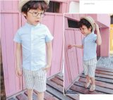 Boy Kids Wear