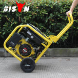 Bison 2.8kw Reliable 3kVA 7.5HP Generator Set for Sale