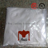 99% Purity Steroid Raw Testosterone Enanthate / Test E Powder with Good Price