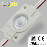 High Brightness RoHS IP67 Colorful LED Module 2835