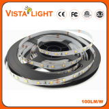 Waterproof DC24V 9.6W/M Super Light LED Strip for Night Clubs