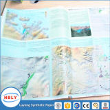 Maps PP Synthetic Paper