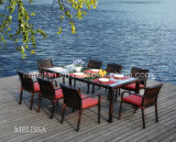 Outdoor Furniture /Patio Furniture/ Garden Furniture/Rattan Furniture Tl1352