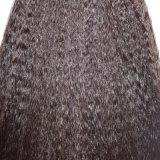 Kinky Straight Brazilian Human Hair Weft (ZYWEFT-228)