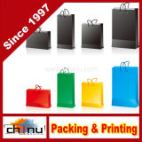 Multi Colors Shopping Paper Bag (5127)