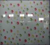 Hot Sale Silk Printing Tempered Glass for Interior Room Decoration