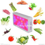 Rectangle LED Light 300W LED Plant Grow Lighting